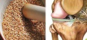 Veja a semente que regenera tendões e tira totalmente a dor dos joelhos.